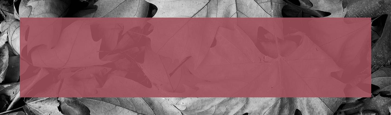 Michael Kors USA: Designer Handbags, Clothing, Menswear